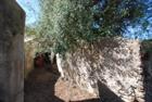 Quattropani Antico palmento Quattropani Lipari