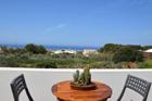 Mare Dammuso cactus Pantelleria